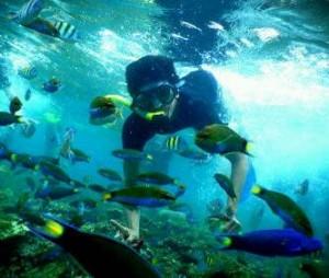 pulau tidungfebritravel